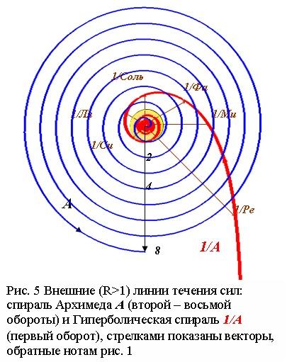 Закон октав в виде линий течения сил: спираль Архимеда А и гиперболическая спираль 1/А