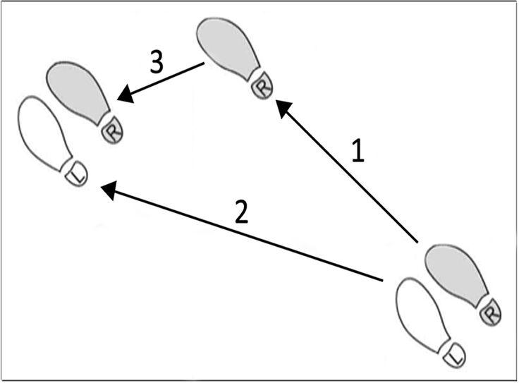 Pin by C Porter0  on DiagramsChartsMaps | Waltz steps, Waltz dance, Dance moves