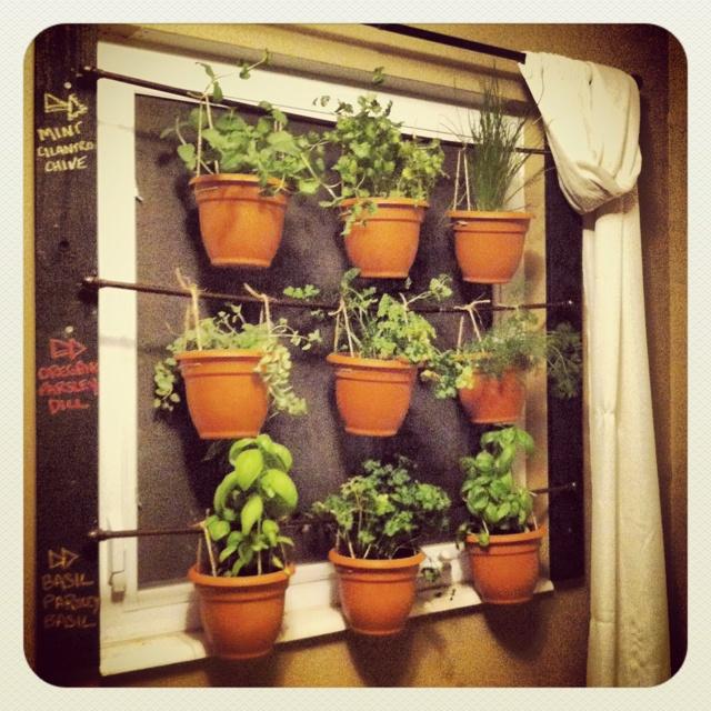 kitchen window herb garden i just made to do list pinterest. Black Bedroom Furniture Sets. Home Design Ideas