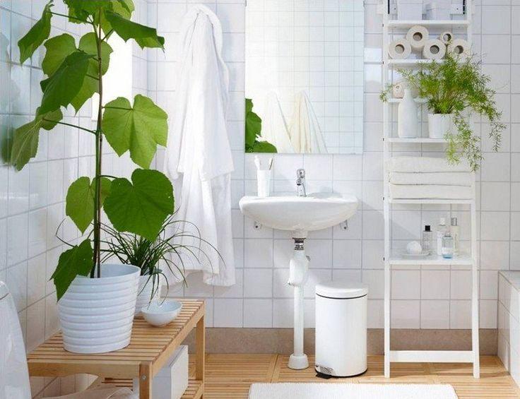 idées fraiches et orginales sur la décoration salle de bains en plantes vertes