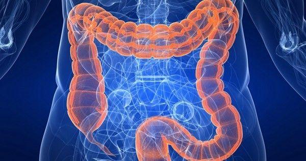 Dans cet article découvrez comment nettoyer les intestins tout en se débarrassant des débris intestinaux.