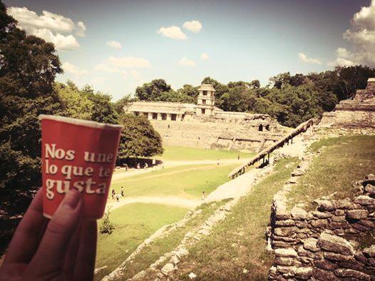 El #vasoviajero ha visitado esta semana las ruinas mayas en #palenque #mexico