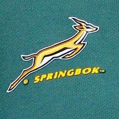 Springbok logo (File)