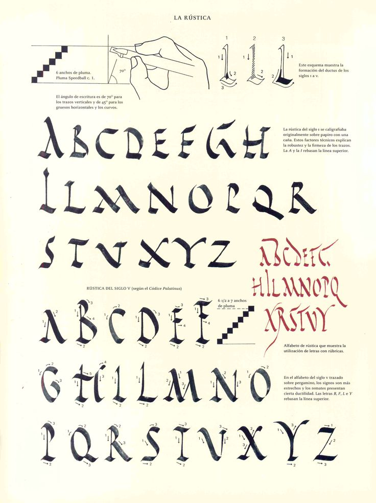 871 Best Calligraphy Mastery Of The Basics Images On