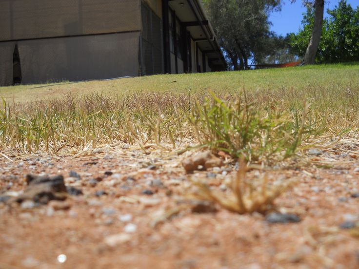 ISO: 80 Aperture: 3.3 Saturation: High Saturation  Focal Length: 8mm Exposer Time: 1/400sec