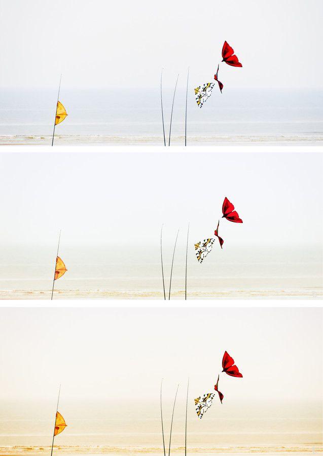 Gone with the wind.. (Triptyc version) by Fred D on 500px  Mon 1er, c'est une photo que j'affectionne particulièrement...  Mon second, c'est 3 versions presque impossible à départager...  Mon 3ème, c'est un concours...  Mon tout est un triptyque de nuances subtiles...  ©FredDPhoto. All right reserved. For any puchase, contact me. Tous droits réservés. Pour tout achat, contactez moi.  http://FredDPhoto.weebly.com