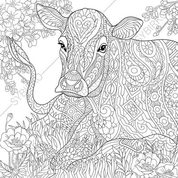 Adult Coloring Pages Cow Zentangle Doodle Book Page For Adults Digital Illustration