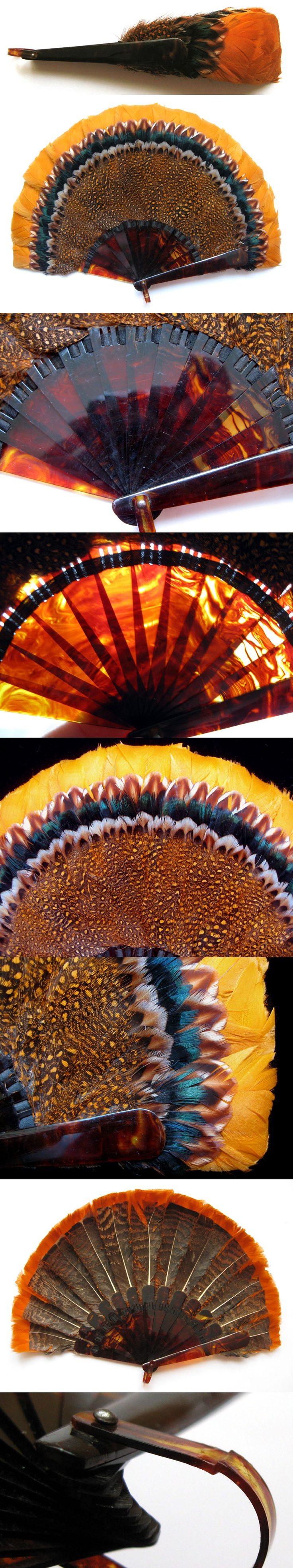 Antique Edwardian Feather & Celluloid Fan Fächer eventail ventaglio abanico 1910 | eBay