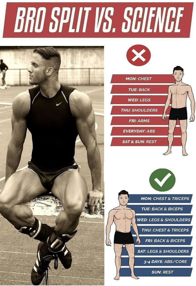 8 Powerful Muscle Building Gym Training Splits Full Body Workout