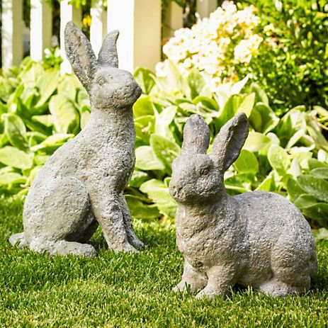 17 Best Images About Outdoor Rabbits On Pinterest