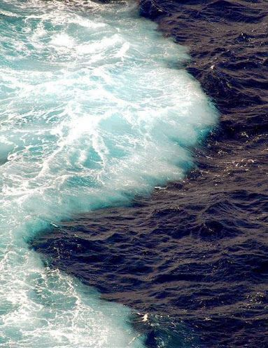 The Sea Barrier Miracle - Two oceans meet but do not mix: Gulf of Alaska!