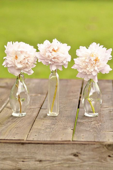 Place single peonies in vintage bottles.