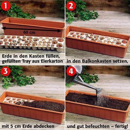 ber ideen zu blumenk sten bepflanzen auf pinterest tomaten anbauen balkonk sten und. Black Bedroom Furniture Sets. Home Design Ideas