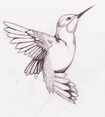 Hummingbird Tattoos Designs, Hummingbird Tattoos Ideas, Hummingbird Tattoos Pictures | Find Me a Tattoo