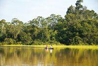 El principal medio de transporte en la Amazonia es el fluvial. Para el desplazamiento individual o de pequeños grupos se utilizan canoas lla...