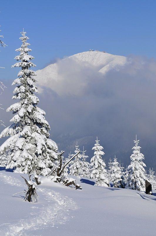 Zima v Krkonoších