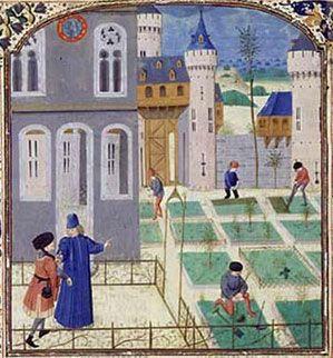 Le Potager, Pier de Crescenzi, Livre des prouffitz champestres et ruraulx, vers 1480-1485, Flandre (Bruges), BnF, Paris.