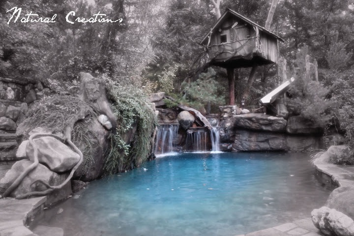 Lagoon Pool In Southern Oregon In My Next House Pinterest Trees Oregon And Pools