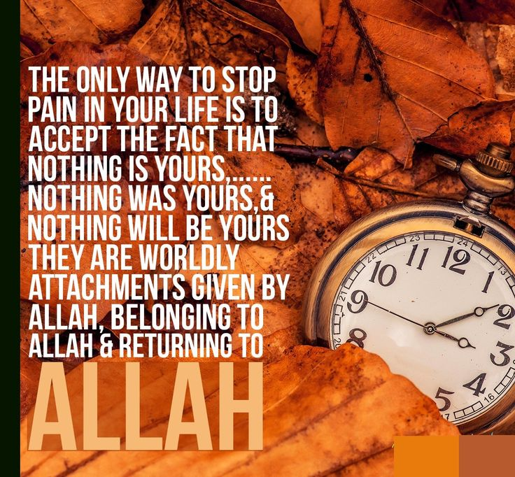 Every thing belongs to Allah