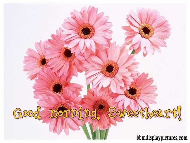 good morning greetings cards