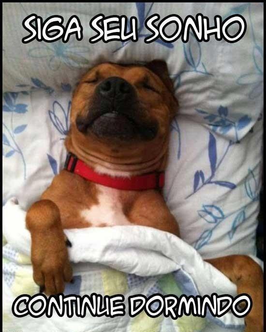 Siga seu sonho. Continue dormindo. (Frases para Face)