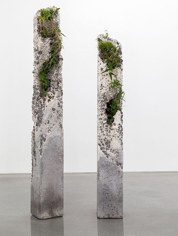Jamie North - Artist