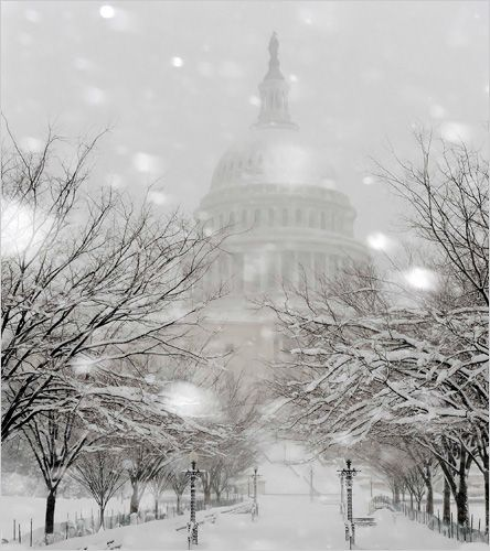 Washington under a snow storm *_*