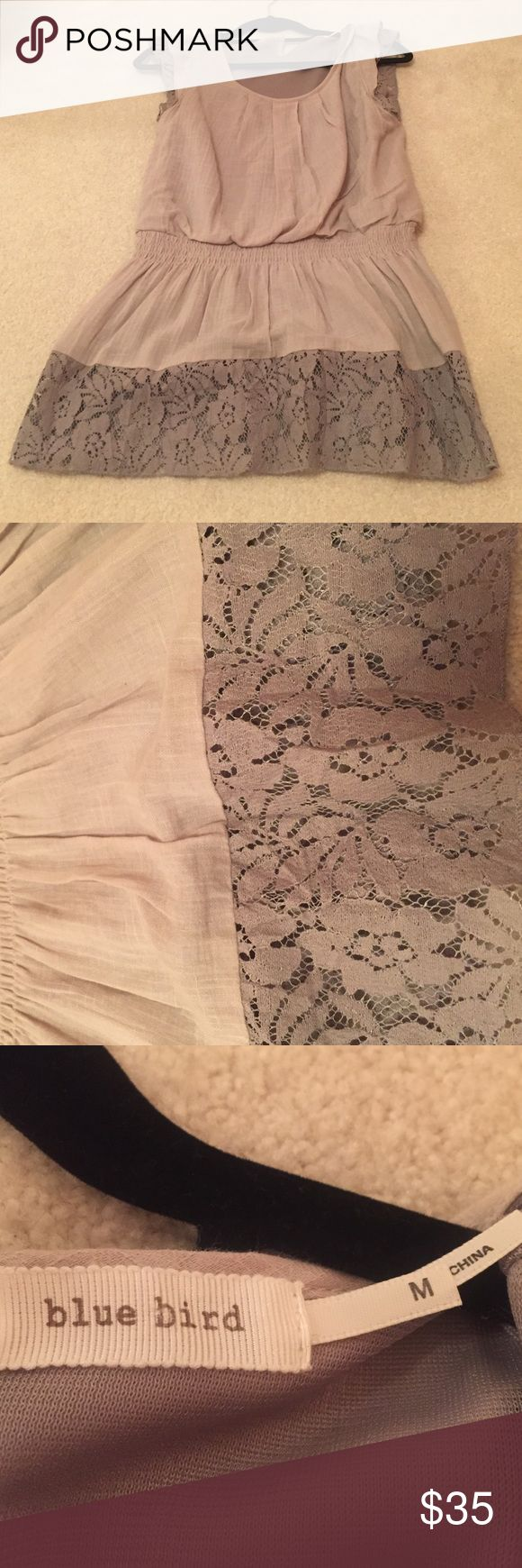Anthropologie sleeveless top! Lace on bottom and around arm holes! Blue Bird Anthropologie brand. Soft and super cute! Blue Bird Tops