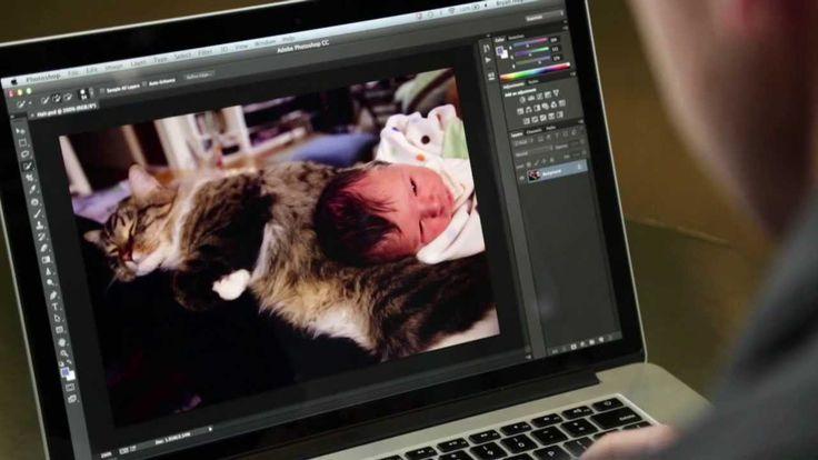 Photoshop Playbook:  Выделение сложных участков Making Fine Hair Selections