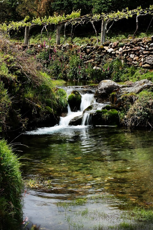Voor wandelen in het oostelijk deel van het park da Peneda-Genês ga je langs de tourist office van Montalegre. Er ligt een prachtige wandelroute zo'n 40 km. ten noordoosten van Cabril, één van de meest afgelegen plekken van Portugal. In slechts 3,5 km. zie je hier eeuwenoude ruïnes, watervallen, een perfect bewaard bergdorpje, bergen en vergezichten!