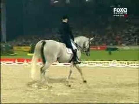 """By far the coolest dressage performance I have every seen.  """"Horse Dancing"""" at it its finest.  And if you don't know horses, this stuff is incredibly hard."""