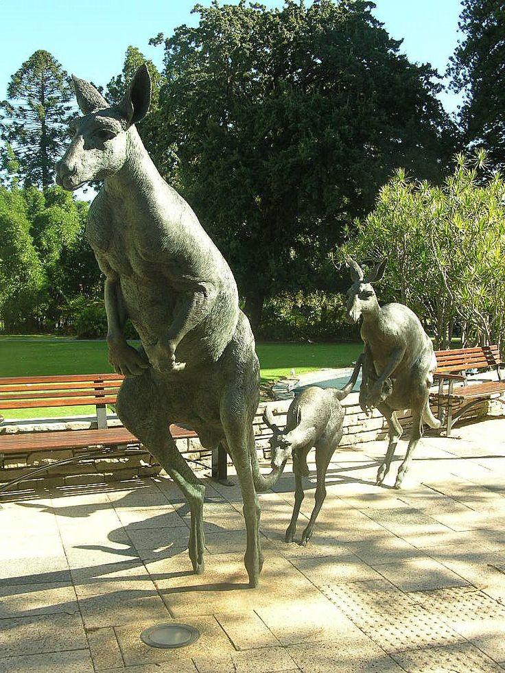 Bronze statues of kangeroo's in Perth, Australia.