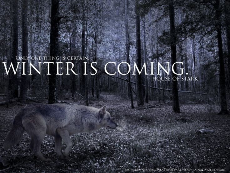 Image result for winter is coming wallpaper