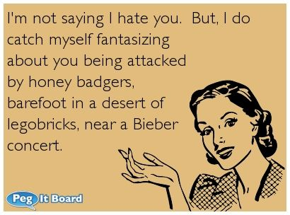Humor ecard: I'm not saying I hate you.  But, I do  catch myself fantasizing  about you being attacked  by honey badgers,  barefoot in a desert of  legobricks, near a Bieber  concert.