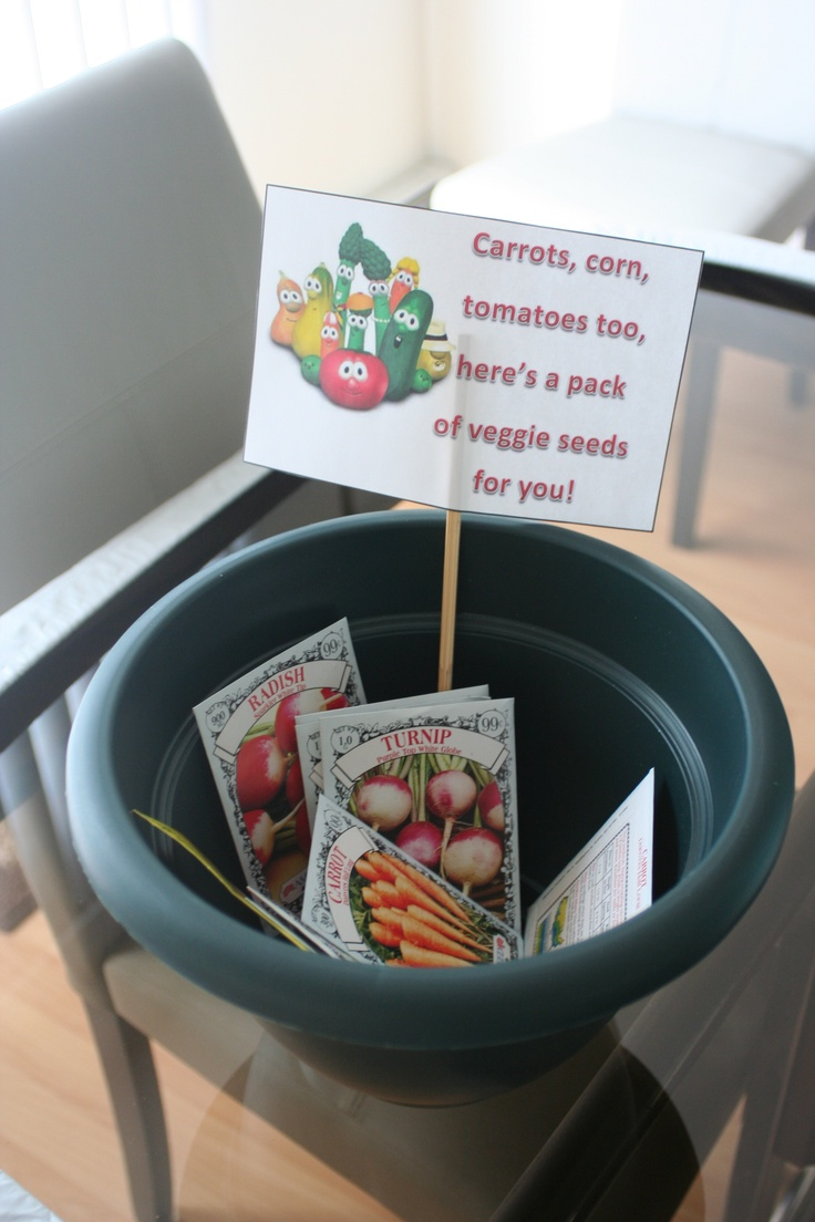 Ethan's Veggie Tales Birthday party- Seed favors