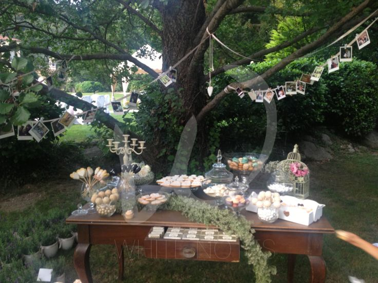 """Sweet buffet for the """"tree of bride&groom life """""""