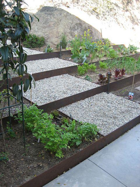 Terraced corten planter. Built around an amazing existing boulder