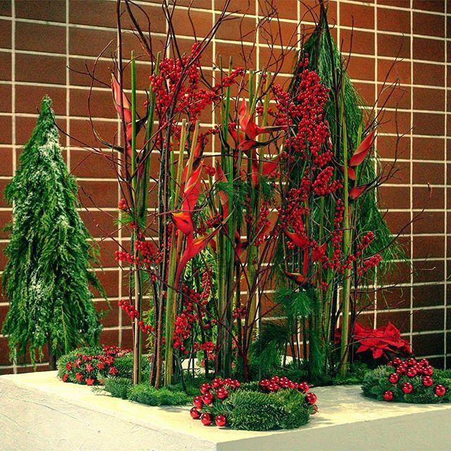 Wystawa świątecznych kompozycji studentów Podyplomowych Studiów #FlorystykaSztukaUkładaniaKwiatów #studiapodyplomowe #budynek35 #wystawa #kwiaty #kompozycja #dekoracja #święta #bożenarodzenie #WOBiAK #SGGW 🌠❄🎄 #Student's work #exhibition at the lobby in #building35 #fowers  #floristry #decoration #holiday #xmas  #christmas #christmasiscoming #ideas #WULS