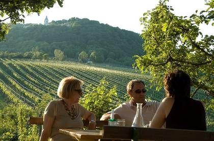 Österrikes huvudstad lockar med läckra bakelser, saftiga wienerschnitzlar och klassisk musik på hög nivå. Men här finns mer - upptäck vinets Wien, huvudstaden där vingårdarna växer ända in i stan.