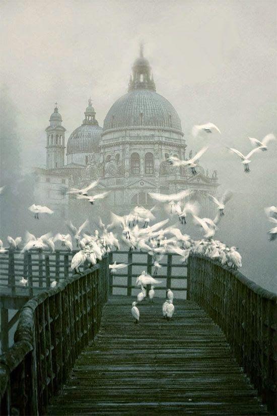 """architecturia: """" Venice, Italy amazing architecture design """""""