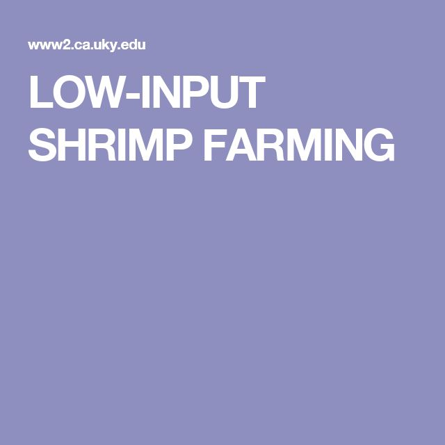 LOW-INPUT SHRIMP FARMING