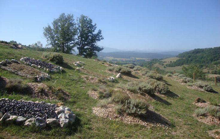 Lauragais-Un cimetière mérovingien: le site de Tabariane à Theilet (Ariège)…
