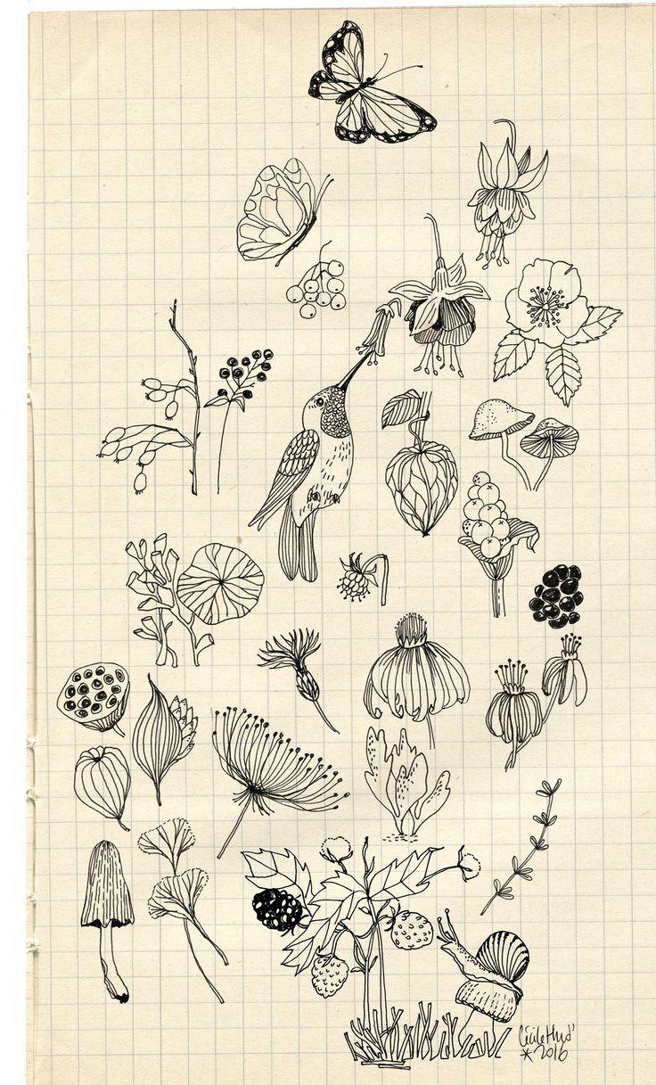 d'escargot en papillon d'algue en lotus de mûre en champignon  je traçais mon voyage à travers les saisons  --- ...