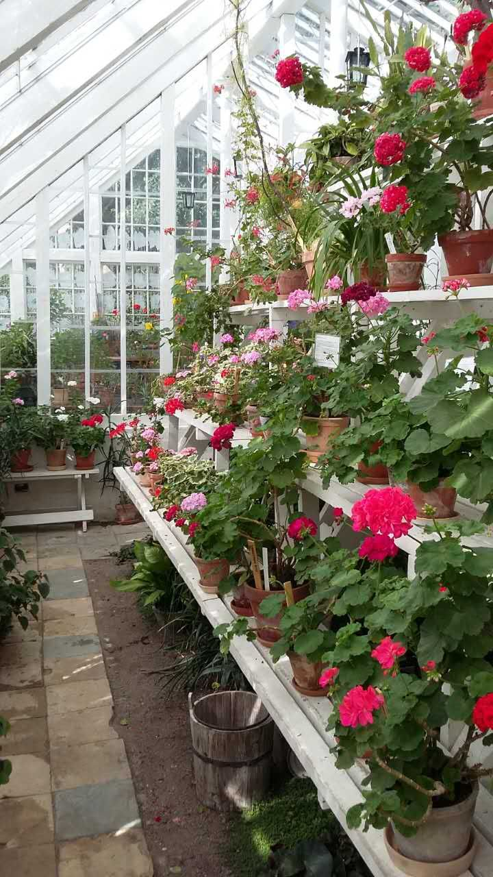Abri De Jardin En Bois Akaa City Teinte > 24 Best De Belles Roses Images On Pinterest Balconies Body