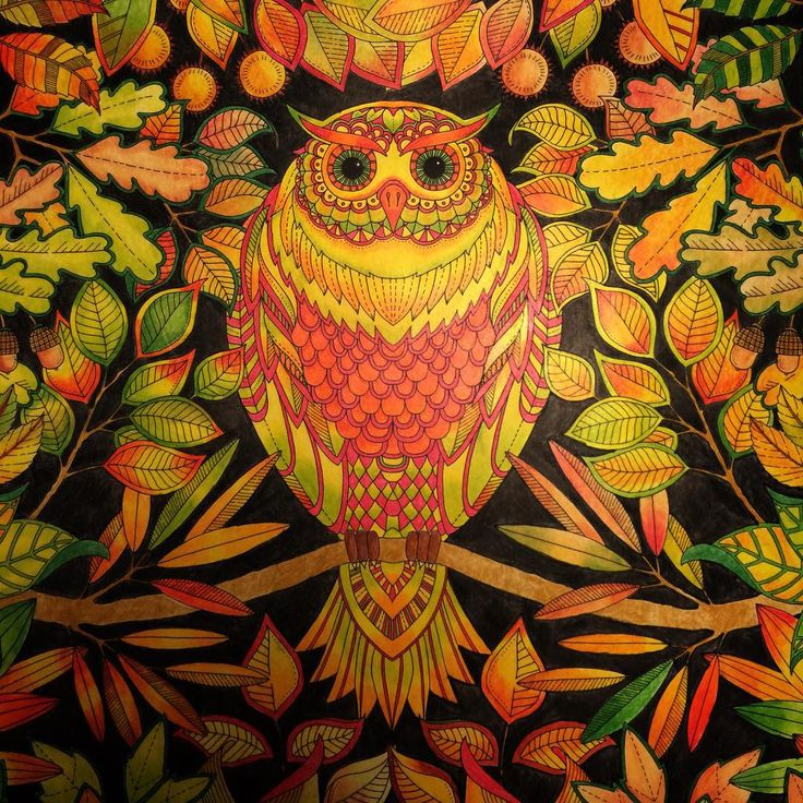 """#tajemnyogród #sztukakolorowania #secretgarden #colouringforadults #kolorowanie #colouring #colours #owl"""