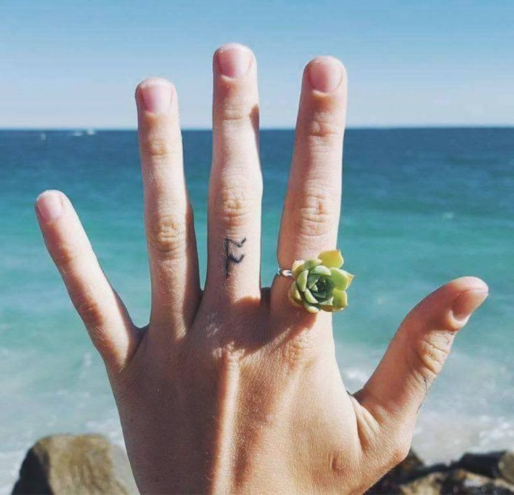 LIVING SUCCULENT RING  The perfect hens nigh and  bridesmaid gift, event statement piece, festivals, weddings and events.  Your living succulent crown can be worn for 3 to 5 days. You will notice your succulents will start to grow off the ribbon base and plant.