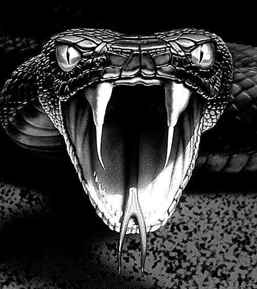 Крутые картинки кобра, открытка гифка сюрприз