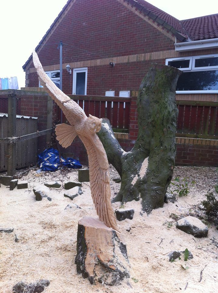 117 Best Images About Chainsaw Carving On Pinterest