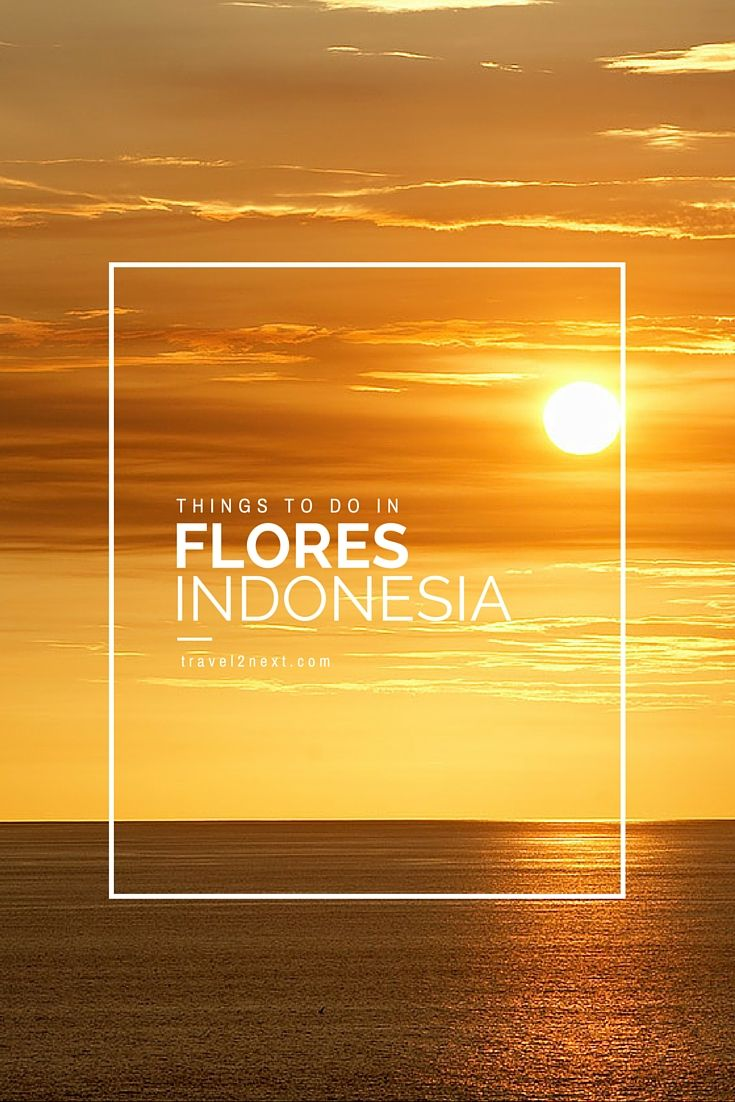 Things to do in Flores