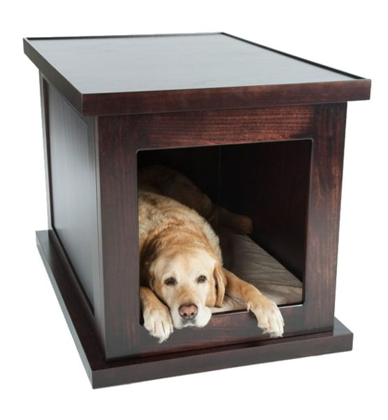 Best 25 dog anxiety ideas on pinterest for Wifi dog crate